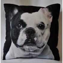 Francia Bulldog mintás párna