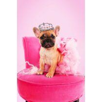 Francia Bulldog mintás törölköző 5 - pink