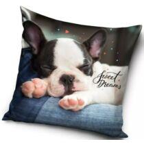 Francia Bulldog mintás párna - sweet