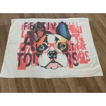 Francia Bulldog takaró - szemüveges
