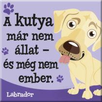Labrador hűtőmágnes - w&w