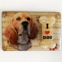Beagle mintás hűtőmágnes jegyzettartó csipesszel