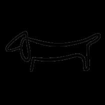 Tacskó matrica - picasso