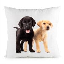Labradoros párna