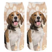Beagle mancsos zokni