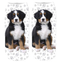 Berni pásztor zokni - puppy