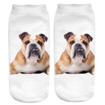 Angol Bulldog zokni