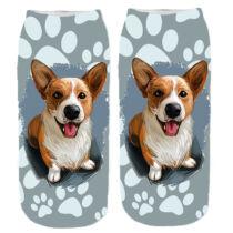 Corgi mintás zokni - paint
