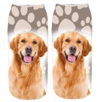 Golden Retriever zokni - mancs