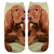 Vizsla mintás zokni - zöld