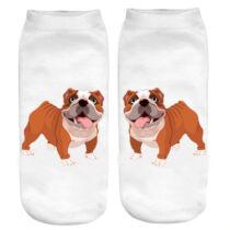 Angol Bulldog zokni 2