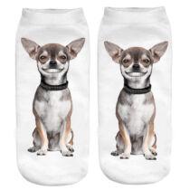 Chihuahua zokni - vigyori