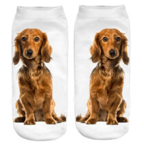 Hosszúszőrű Tacskó zokni