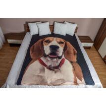 Beagle ágytakaró