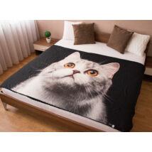 Macskás ágytakaró