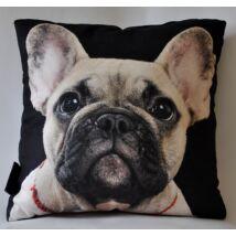 Francia Bulldog mintás párna - bézs
