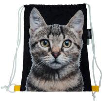 Macskás hátizsák