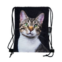 Macskás hátizsák 2