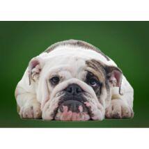 Angol Bulldog ágytakaró 2