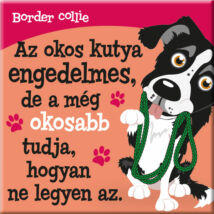 Border collie hűtőmágnes - w&w
