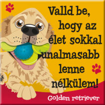 Golden retriever hűtőmágnes - w&w