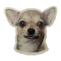 Chihuahua matrica