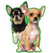 Chihuahua autóillatosító 2