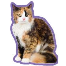 Calico macskás autóillatosító