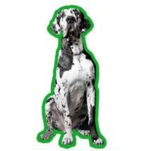 Dán dog autóillatosító
