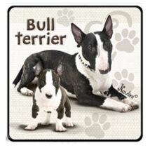 Bull Terrier hűtőmágnes