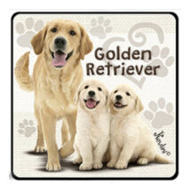Golden Retriever hűtőmágnes
