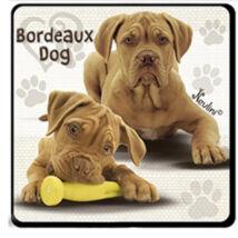 Bordeaux dog hűtőmágnes
