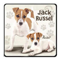 Jack Russell hűtőmágnes