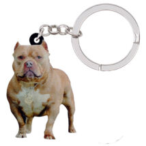Amerikai Pit Bull Terrier kulcstartó