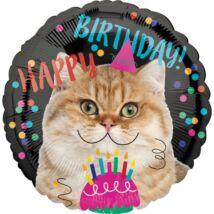 Happy Birthday Cicás lufi