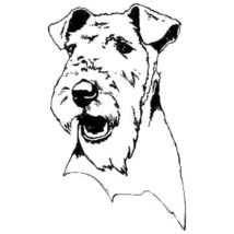 Airedale Terrier matrica