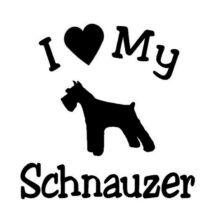 I Love My Schnauzer matrica