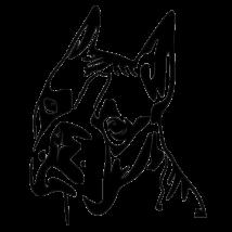 Boxer matrica - fej