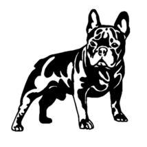 Francia Bulldogos matrica 2