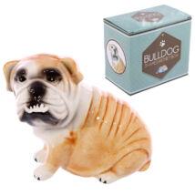 Angol Bulldog persely 2