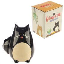 Fekete macskás persely