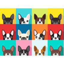 Boston Terrier mintás fekete maszk - color