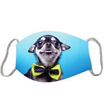 Chihuahua szájmaszk - kék