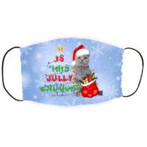 Brit macskás karácsonyi szájmaszk - jolly