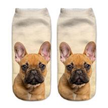 Francia Bulldogos zokni