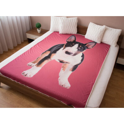 Bullterrier ágytakaró