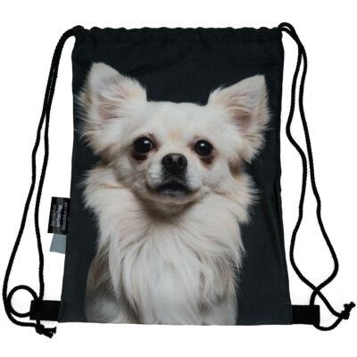 Chihuahua mintás hátizsák