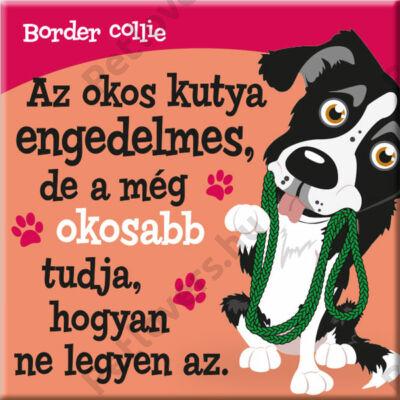 Border collie hűtőmágnes - w&w