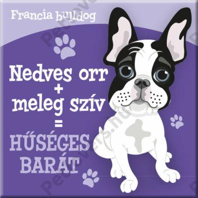 Francia bulldog hűtőmágnes - w&w