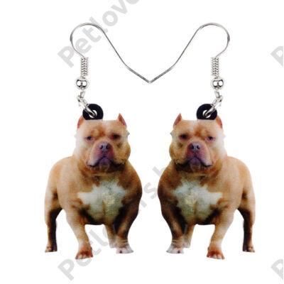 Amerikai Pit Bull Terrier fülbevaló
